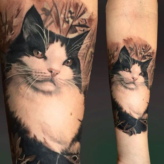 gato retrato en 3d