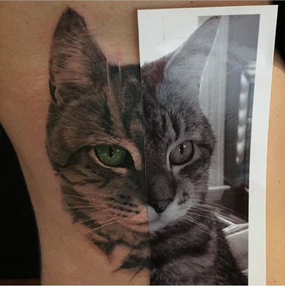 gato retrato tattoo