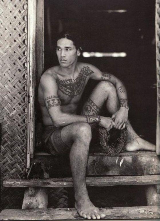 maori nativo