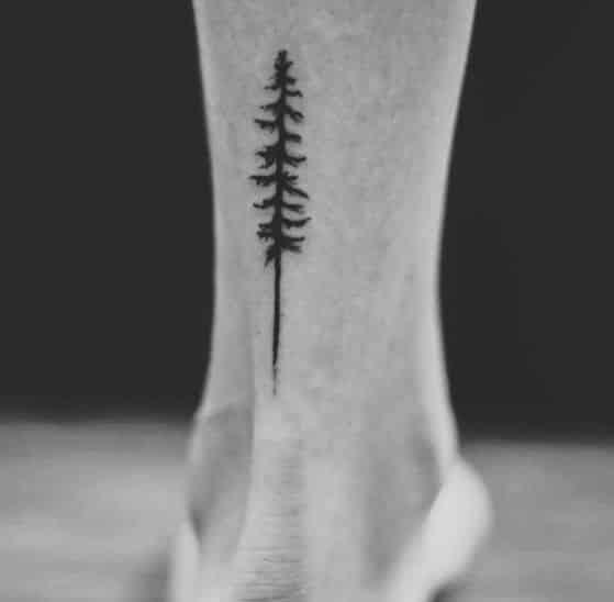 tatuaje de arbol para hombre en el tobillo