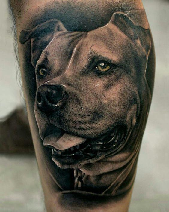 Perros Tatuados (6)