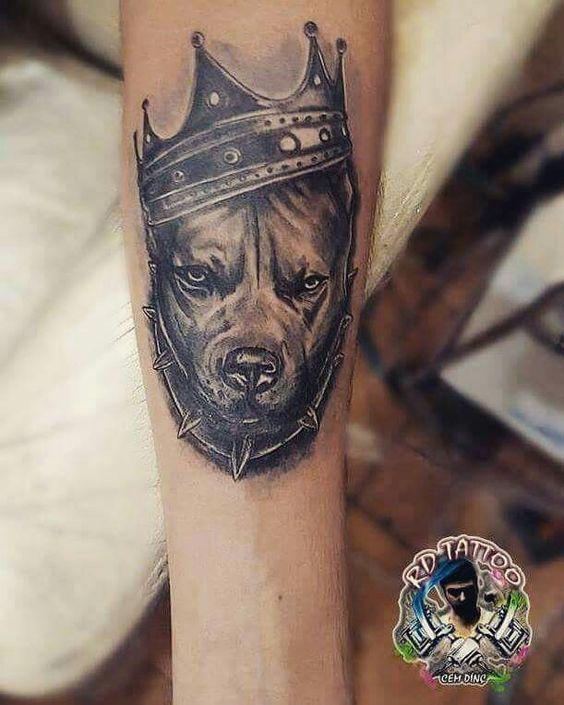 Tatuajes De Pitbulls (4)