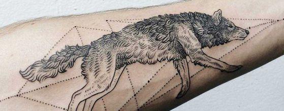 Tatouage Loup Avant Bras (1)