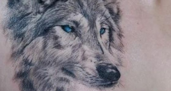 Tatouages Loup (11)
